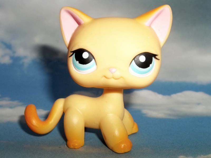 Lps Shorthair Cats Numbers Cute Cat 2018